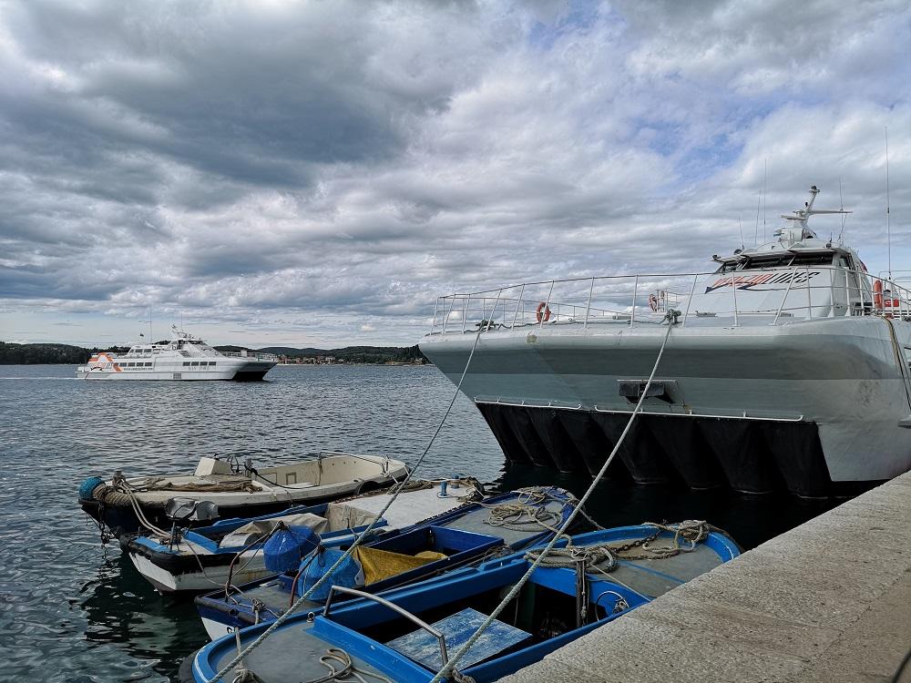 Port agent Piran